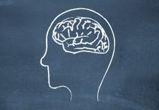 Diferenças entre cérebros masculino e feminino