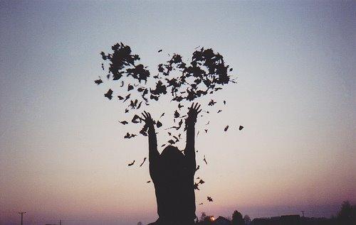 As coisas que a gente ama têm que ser livres
