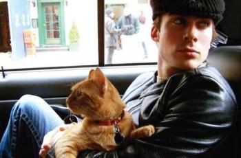 Estou apaixonado, e ele é gato!