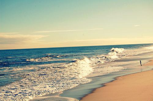 6 músicas para você ouvir na praia