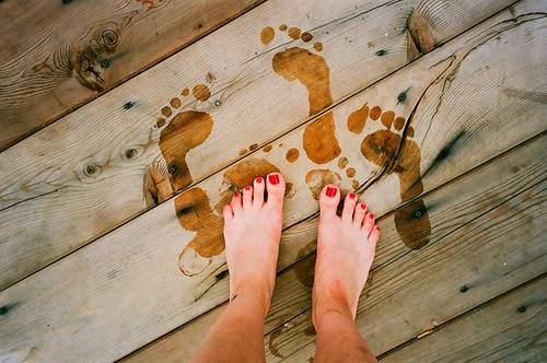 Deixe livres os meus pés – um texto sobre companheirismo e liberdade